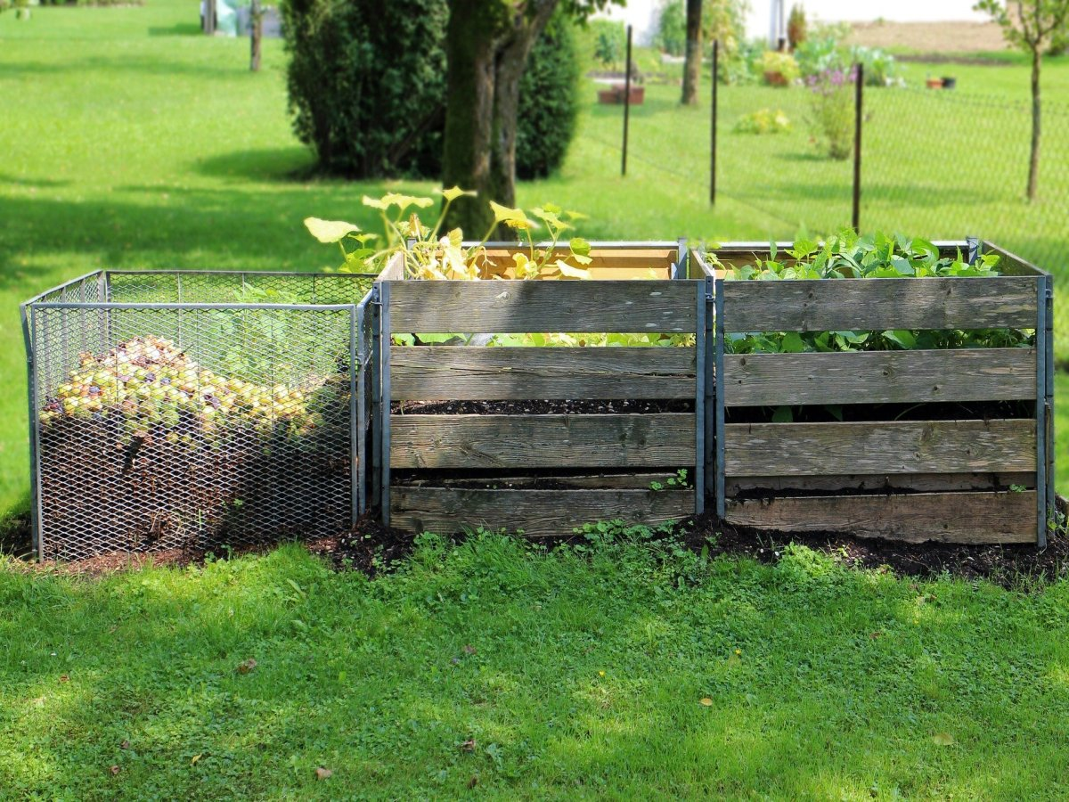 Read more about the article Compost at Home