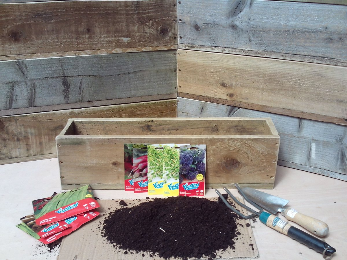 Growing Food at Home with a DIY Planter